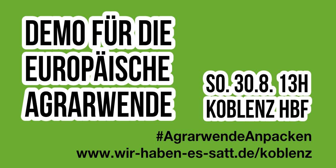 Wir haben es satt!-Demo zum EU-Agrargipfel